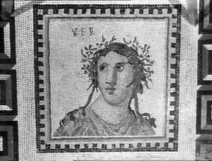 Mosaic found in Ostia Antica